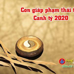 thai-tue-con-giap-2020