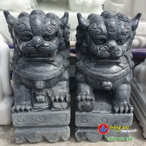tuong-ly-lan-da-den-50cm