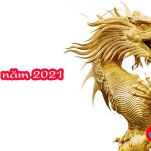 van-menh-tuoi-thin-2021